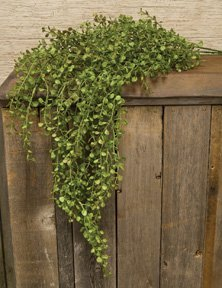 Hanging Pepper Grass Weeping Bunch Light Green Leaves Country Primitive Floral Decor