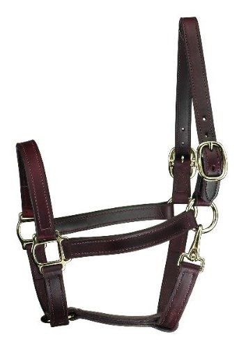 (Perri's Horse Track Style Leather Turnout Halter with Snap, Havana)