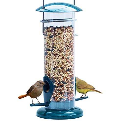 Dawn of Pets Bird Feeder for Outside, Weather Proof, Hanging, Easy to Setup, Durable,, Tube Bird Feeder for Outdoors Review