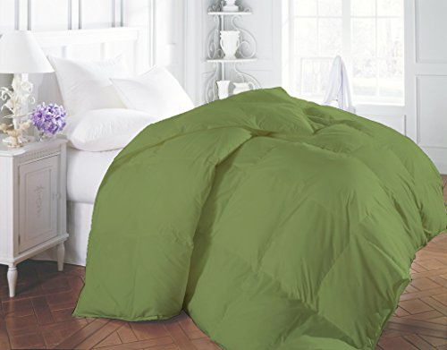 COMFORTER 1200 TC Egyptian Cotton Warm Heavy Weight Duvet Hypoallergenic Superior Softness Sage Twin XL By BED ALTER Solid (500 GSM Microfibre filling Apt for Winters) price