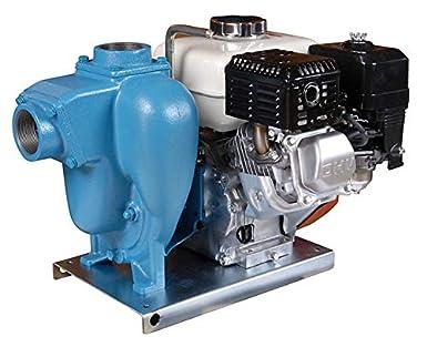 MP Pumps 29635 FLOMAX8 2
