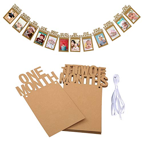 OOTSR 1st Birthday Photo Banner Growth Record 1-12 Month Photo Prop for First Birthday Party Bunting Decor]()