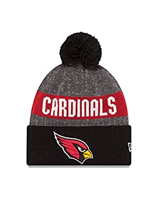 NFL 2016 Reverse Team Color Sport Knit Beanie