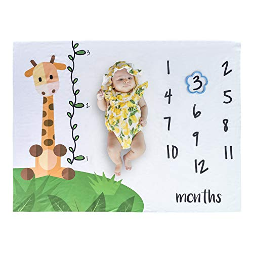 Baby Monthly Milestone Blanket   Newborn Photography Props