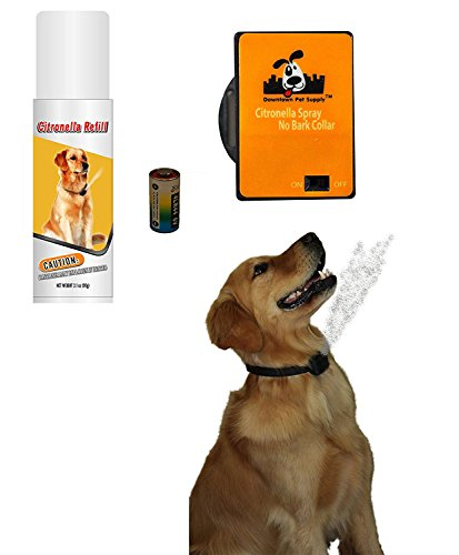 Downtown Pet Supply NO BARK Collar Citronella Spray Collar, Anti-Bark Deterrent for Dogs Kit - Safe, Effective, and Humane Dog Barking Control Collar (1 PK)