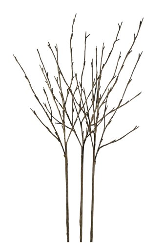 Hi-Line Gift LtdFloral Lights Lighted Willow Branch (set of 3 Branches) with 96 bulbs, 40 inches