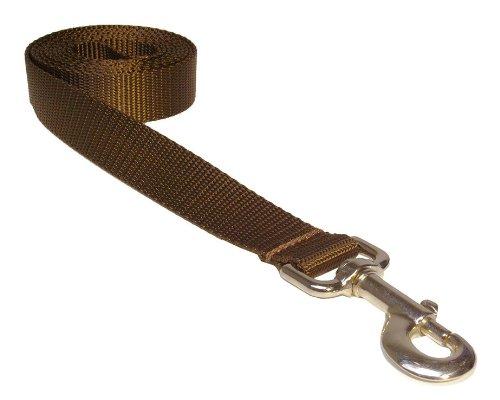 Sassy Dog Wear 6-Feet Brown Nylon Webbing Dog Leash, Large