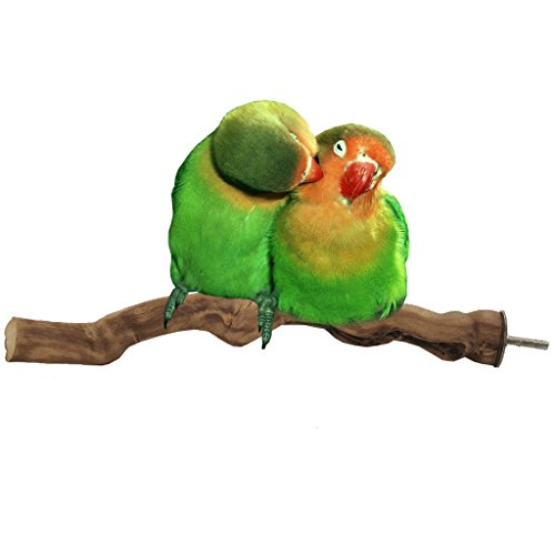 Bwogue-Bird-PerchNatural-Grapevine-Bird-Cage-Perch-for-Parrot-Cages-Toy