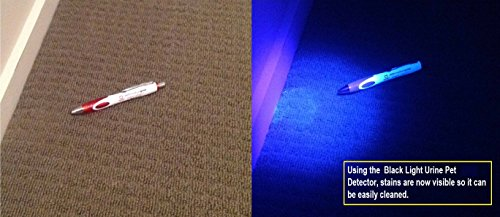 UV Stain Detective LED Blacklight For Detecting Cat Dog amp Rodent Urine New Fr EBay