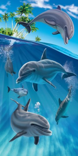 Dolphins Swimming From the Island Velour Beach Towel by Island Gear