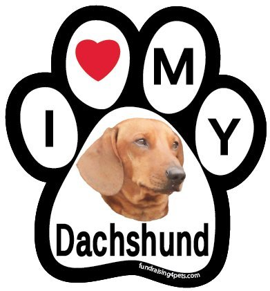 I Love My Dachshund Paw Magnet - Dachshund Red Magnet