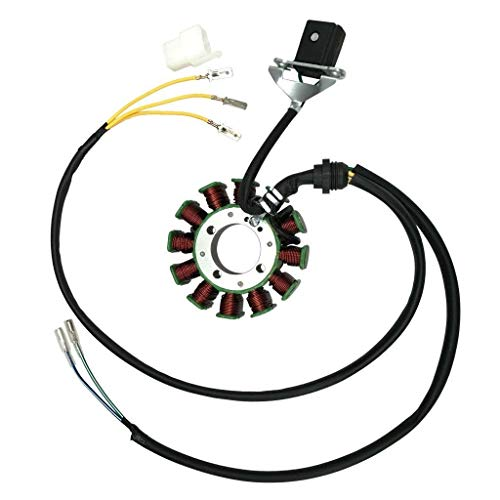 12 Coil Pole Magneto Stator For 200-250cc Lifan Engine Dirt Bike ATV Gokart Quad