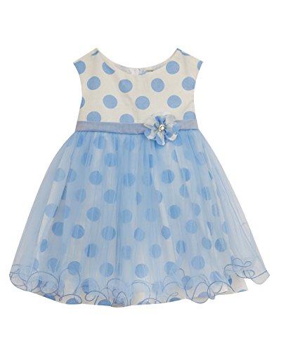 Rare Editions White Dress (Rare Editions Baby Girls' Dot Mesh Social Dress, Peri / White, 18M)
