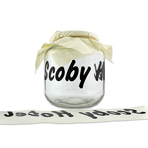 scoby-hotel-1-2-gallon-glass-jar-for-scoby-storage-or-kombucha-tea-brewing-half-batches-includes-pla