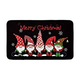 AVOIN Merry Christmas Santa Decorative Doormat, 18 x 30 Inch Winter Holiday Elf Non-Skid Floor Mat Switch Mat Indoor Outdoor Home Garden