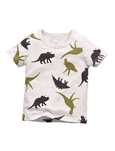 Warmbaby Little Boys Kids Short Sleeve T-Shirts 3T Gray -