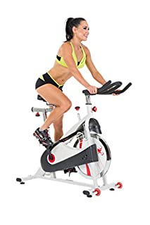 Sunny Health and Fitness SF-B1509 Bike