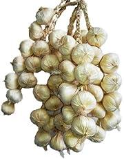 Kalcifer konstgjorda frukter grönsak sträng för restaurang hotell hem trädgård dekoration display