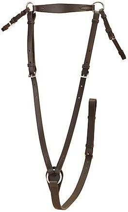 Different Sizes Black Tory Wide Stirrup Iron Belt