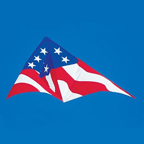 11ft. Patriotic Delta Kite by Premier Kites