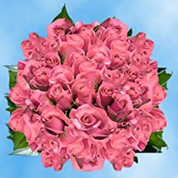 150 Fresh Cut Pink Roses for Valentine's Day | Kiko Roses | Fresh Flowers Express Delivery | The Perfect Valentine's Day Gift