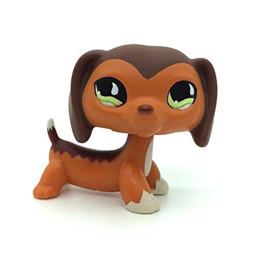 DZH Littlest Pet Shop LPS Popular Brown Dachshund Savvy Reed Authentic #675 (Shop Pet Popular)
