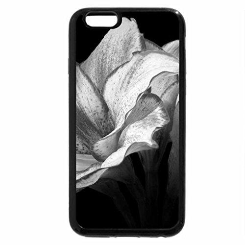 iPhone 6S Plus Case, iPhone 6 Plus Case (Black & White) - Amaryllis 2