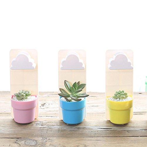 Afco Wall Hanging Plant Pot,Rainy Cloud Creative Auto Watering Flowerpot Home Garden Bonsai Decor size 7.1cm x 5.7cm x 18cm (2#)