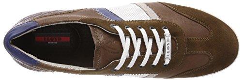 LLOYD Aaron, Sneaker Uomo Braun (Cigar/Grey/Bianco/Royal/Marrone)