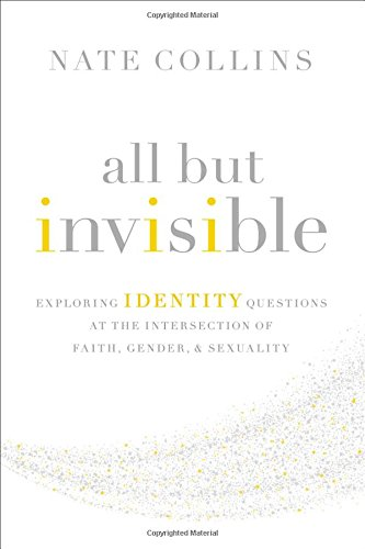 All But Invisible: Exploring Identity Questions at the Intersection of Faith, Gender, and Sexuality ebook