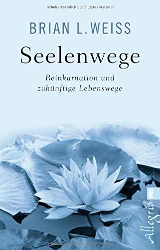Seelenwege: Reinkarnation und zukünftige Lebenswege Taschenbuch – 12. Oktober 2018 Brian L. Weiss Vincenzo Benestante Sabina Trooger Allegria Taschenbuch