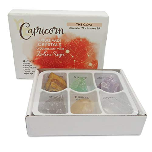 Rock Paradise Horoscope Stone Box Set - Capricorn Zodiac Sign - Healing Crystals Birthstone Charms - Astrology Crystal Healing Horoscope Gift