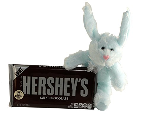Plush Bunny Rabbit Stuffed Animal with Giant Hersheys Chocol