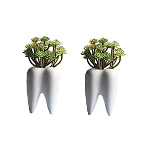 Youfui Home Decor Pot, Succulent Planter Flowerpot Decor for Home Office Desk 28