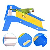 Bestmemories 2 in 1 Parrot's Slide Training Bird