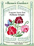 Sweet Pea - Perfume Delight Seeds