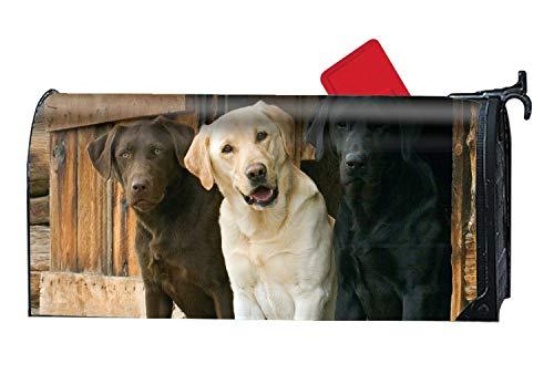 Taocaihop The Beautiful Animal Labrador Retriever Dogs Mailbox Cover Standard
