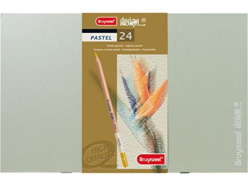 Royal Talens Bruynzeel Design 24 Piece Pastel Pencil Set for Artists (Best Landscape Architects In India)