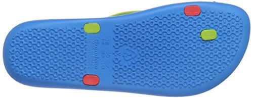 Ipanema Mix Color Damen Zehentrenner Blau (Blue/Red/Green 24010)
