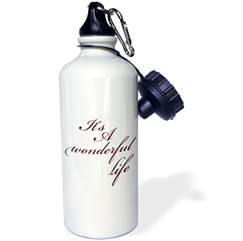 3dRose wb_79141_1 Its A Wonderful Life Inspirational Sayings Sports Water Bottle, 21 oz, White