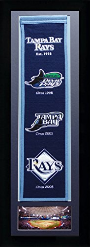 MLB Tampa Bay Rays Legends Never Die Team Heritage Banner with Photo, Team Colors, 15