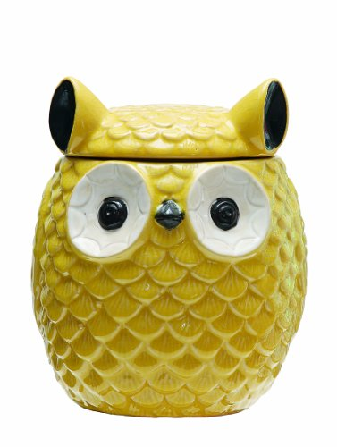 Creative Co-op Farmington Stoneware Owl Jar with Lid, 8-Inch, Yellow