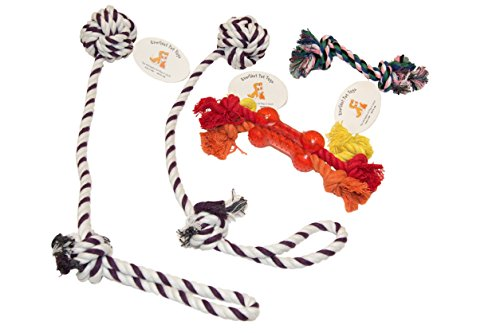 everlast-pet-toys-rope-teether-bone-bundle-for-dogs-2-knotted-ball-pull-ropes-multi-colored-knotted-