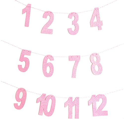 Gole/Pink Milestone Photo Banner Boy Girl 1-12 Month Photo Bunting Garland Baby Shower 1St First Birthday Party Decorations pink]()