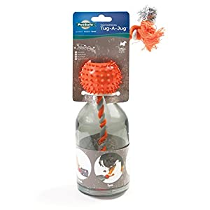 PetSafe Small Sportsmen Tug A Jug Pet Chew Toy