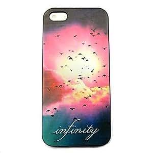 JJE Sky birds Pattern Hard Case for iPhone 4/4S