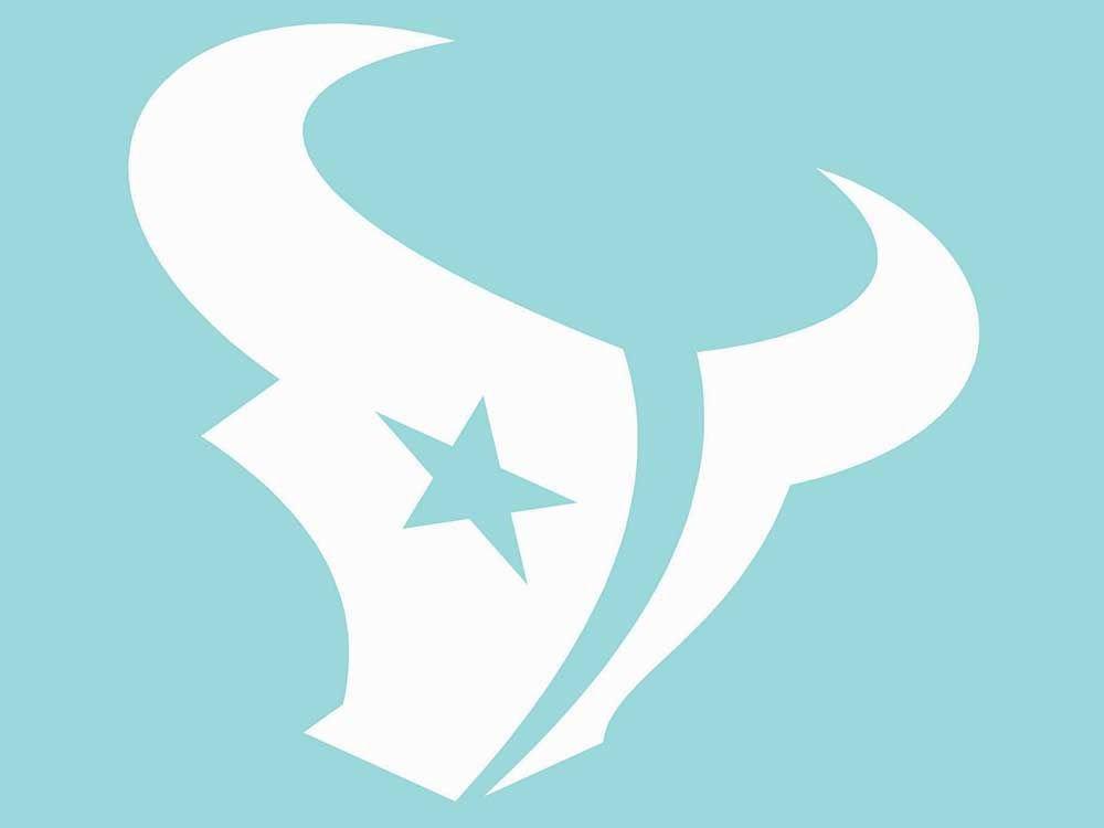 Houston Texans 8x8 White Team Logo Decal Wincraft
