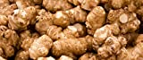 Jerusalem Artichokes (Sunchoke or Sunroot) Adama Foods - 2 1/2 pounds (2.5 lbs) for Planting or Eating