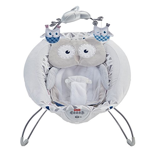 Fisher Price Deluxe Bouncer Baby Gear Baby Swing With Songs