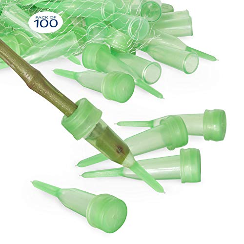 Floral Water Tubes/Vials for Flower Arrangements by Royal Imports, Green - 2.5